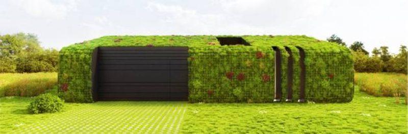 Green roof. Credit: Van der Tol Hoveniers en terreininrichters bv.