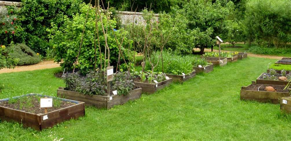 how to build raised garden beds on your own for great result